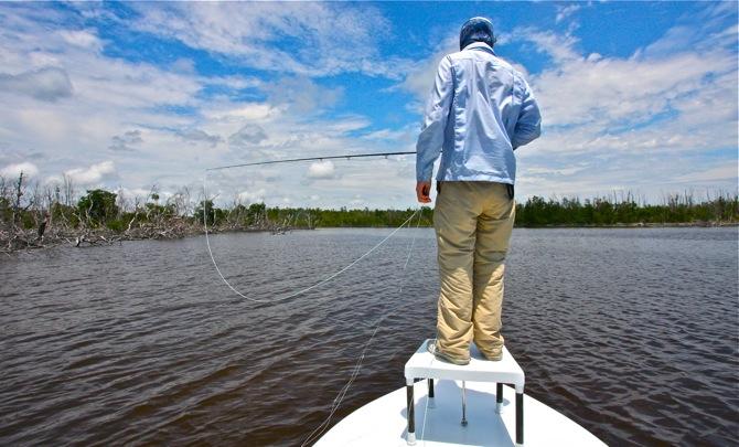 tarpon fishing in the Everglades