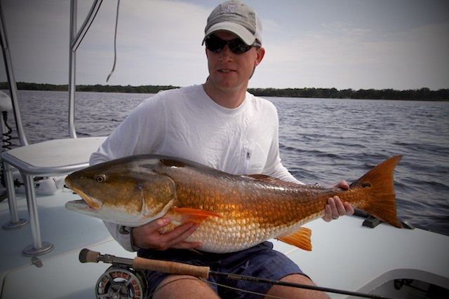 bull redfish caught on a fishing charter with Spotted Tail Outdoors